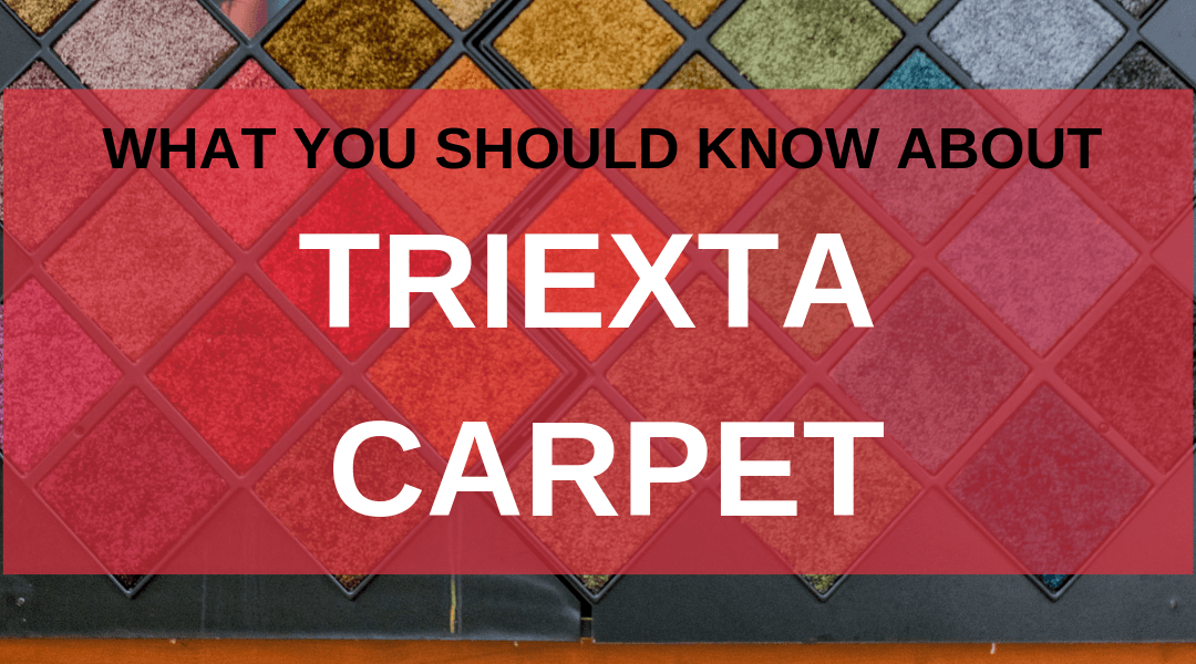 What You Should Know About Triexta Carpet