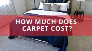 How much does carpet cost?