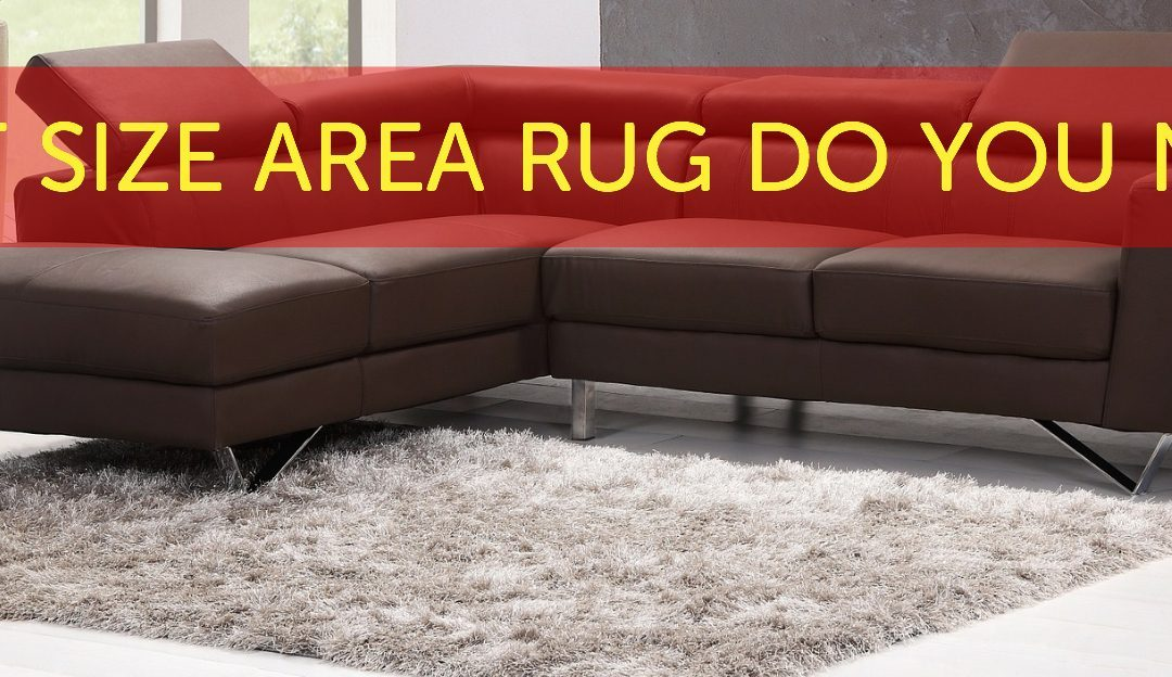 What Size Rug Do You Need?