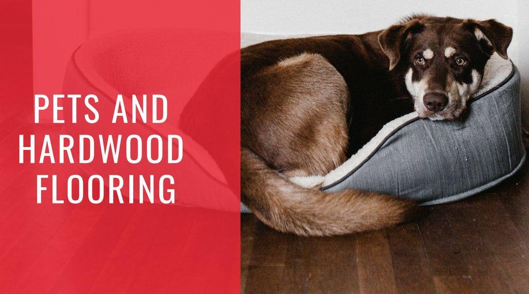 Pets and Hardwood Flooring