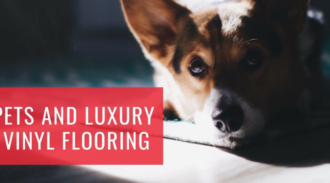 Pets and Luxury Vinyl Flooring